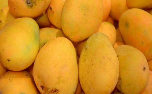 Best mangoes in the world: Countries that produce the best mangoes