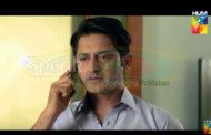 Watch Haya Ke Daman Mein Episode 54 on Hum TV – 14 June 2016