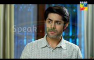 Watch Haya Ke Daman Mein Episode 59 of 20th June on Hum TV – 20 June 2016