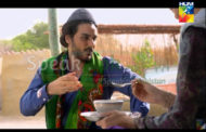 Watch Udaari Episode 11 of 19th June on Hum TV – 19 June 2016